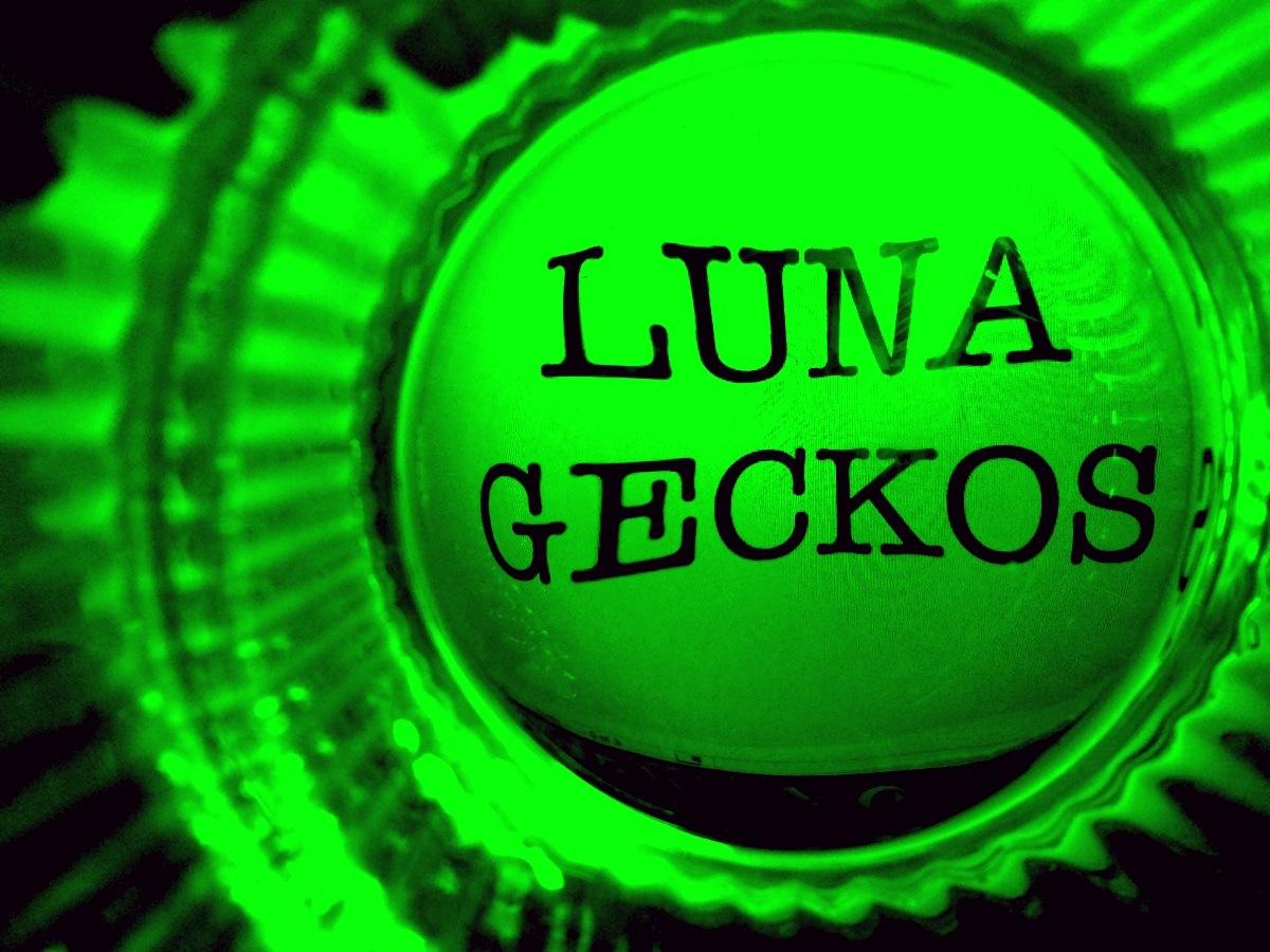 Gecko LOGO text green